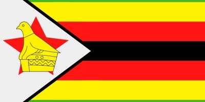 ZIM flag