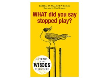 Win! Copy of 'What did you say stopped play?'