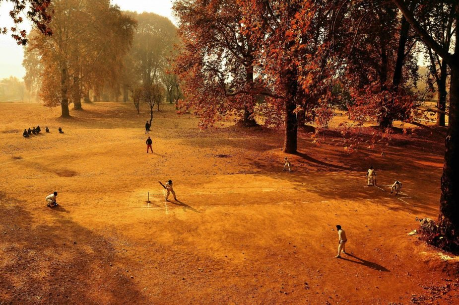 Previous Winners Of The Wisden Cricket Photograph Of The Year