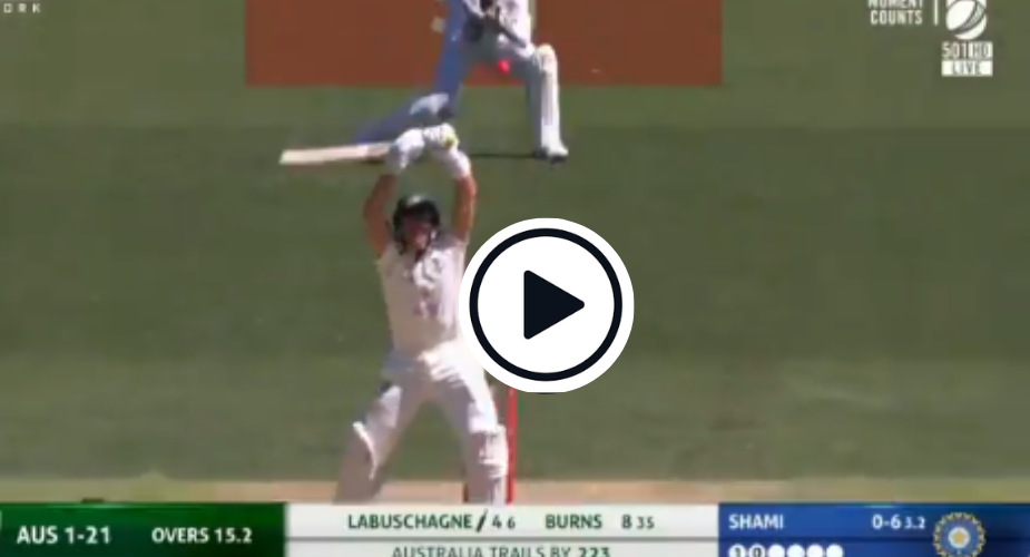 Watch Labuschagne Copies Smith S Registered Trademark Leaves
