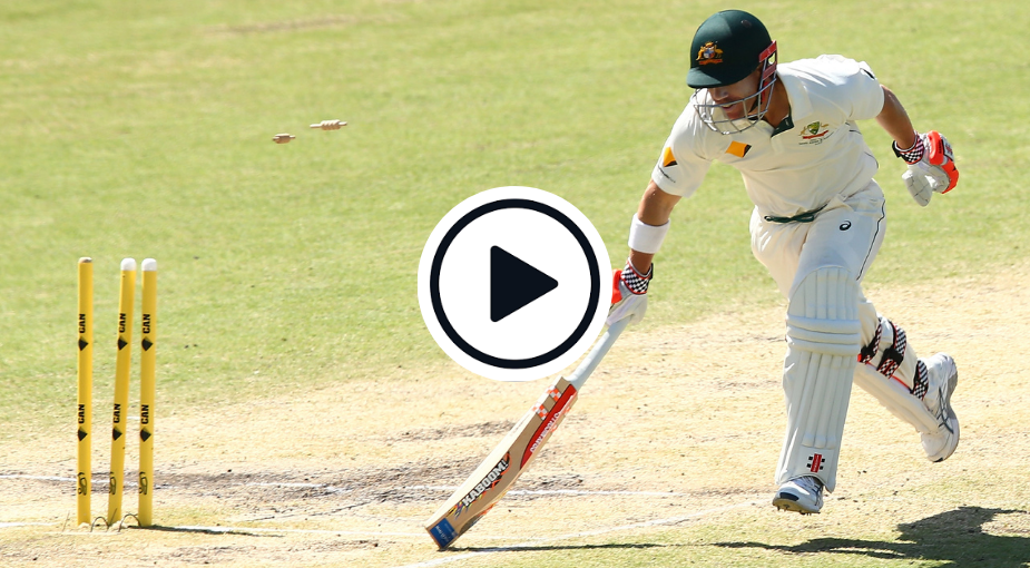 Watch: The Temba Bavuma Mid-Air David Warner Run Out That Is Even Better Than His Fawad Alam Effort