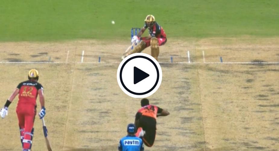 Watch: Glenn Maxwell executes sensational reverse scoop against T Natrajan's pace