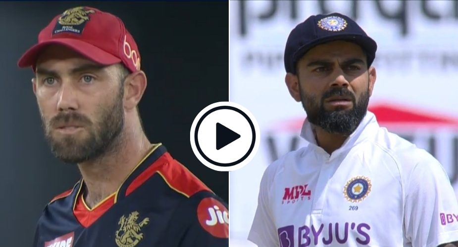 Watch: Maxwell Takes Kohli's Lead, Refuses To Believe He's Been Bowled