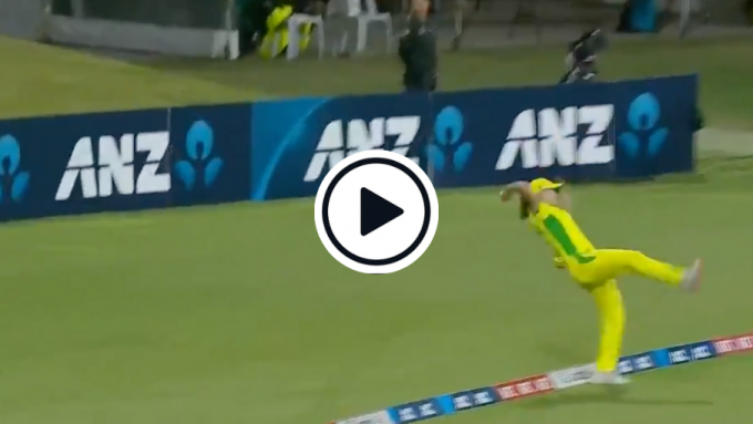 Watch: Ellyse Perry produces stunning boundary save